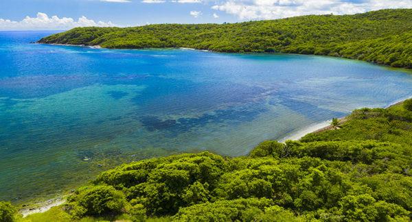 Que voir du Nord au Sud de la Martinique
