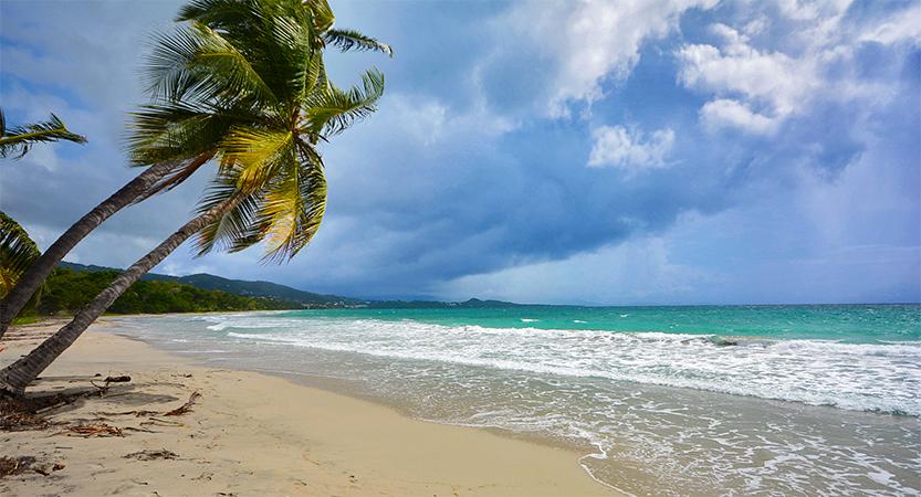 Expérience : Etre propriétaire de Villas en Martinique