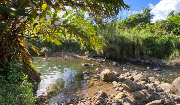Rivière Martinique