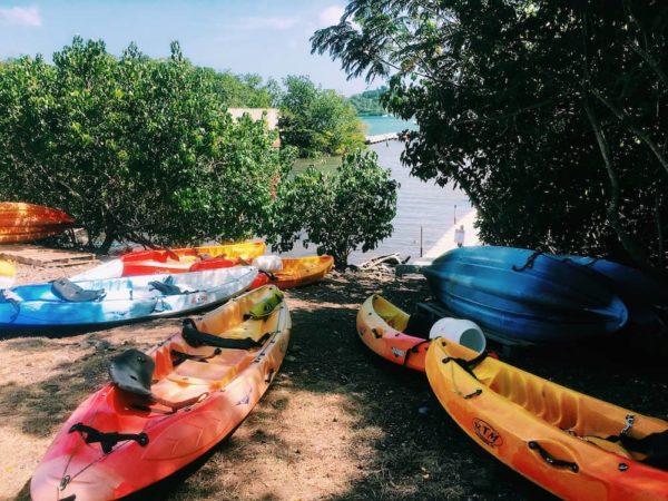 Madinina Kayaks la base